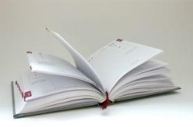 Diary280x185